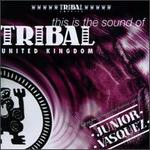 This Is the Sound of Tribal UK