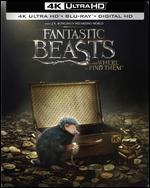 FANTASTIC BEASTS AND WHERE TO FIND TH