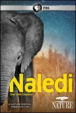 NATURE:NALEDI ONE LITTLE ELEPHANT