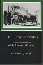 The Patient Particulars