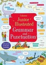 Junior Illustrated Grammar and Punctuation Bingham, Jane