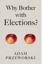 Why Bother With Elections?